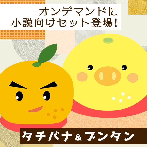 小説向けタチバナ・ブンタンセット登場